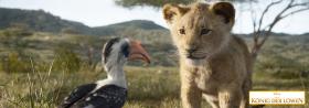 *** Der König der Löwen ***