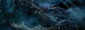CRAWL: Vorsicht, bissige Alligatoren! Unsere Krokodil-Survival-Tipps!